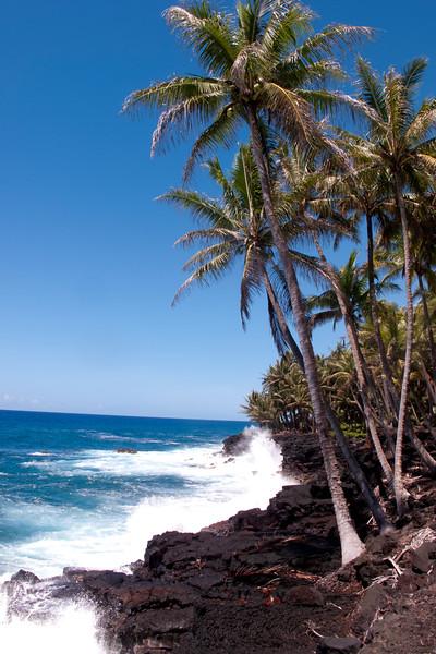 Hawaii_072615_0044_HI East Coast.jpg