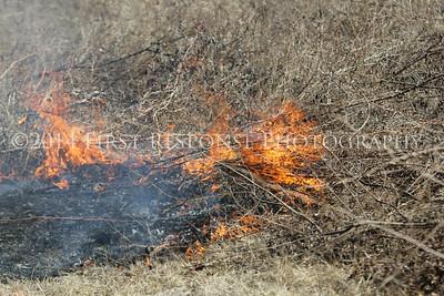 Fairview/ McKinney, TX. Heard Museum Controlled burn.