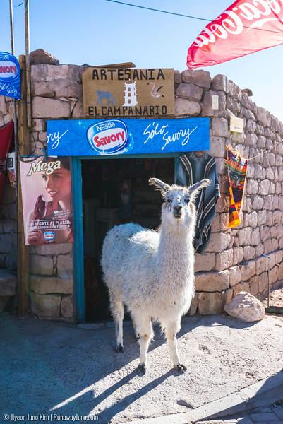 10.12_Atacama-6102917.jpg