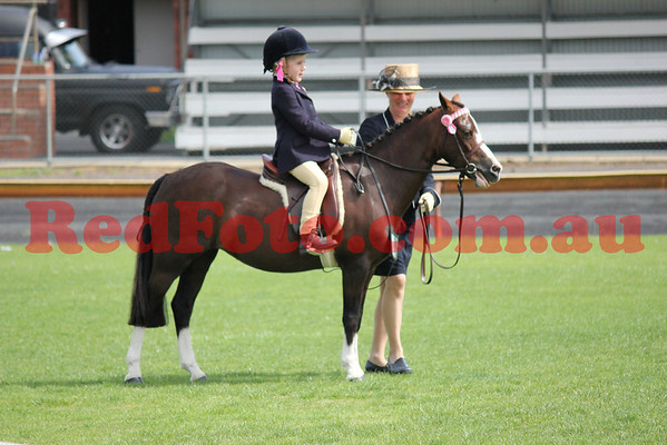 2011 11 05 Busselton Ag Show Arena_1