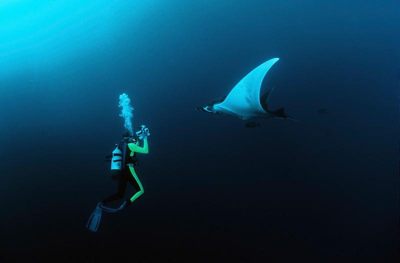 Larry Dive-1.jpg