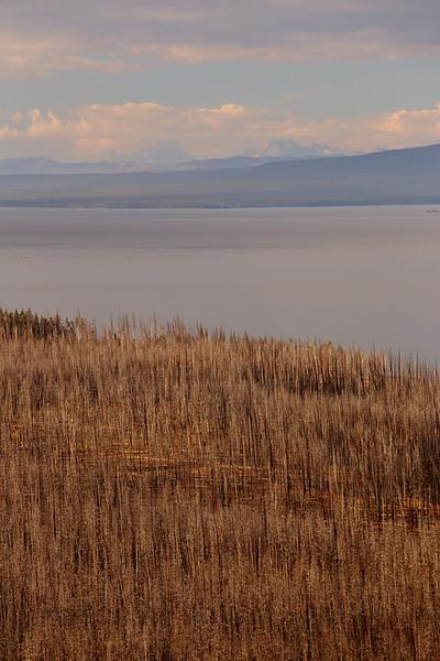 Yellowstone 107.JPG