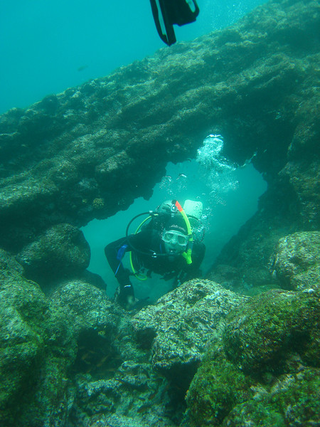 Diving in the Galapagos (125 of 392)