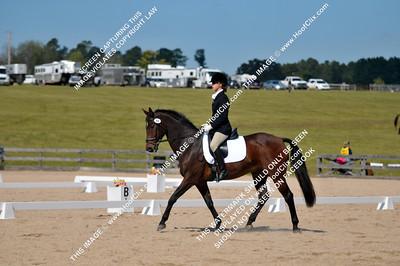 2011-10-22 USEA Horse Trial