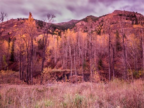 Fernie & Elk Valley