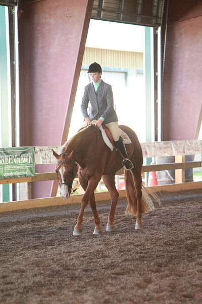 Junior & Senior Hunter Under Saddle