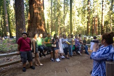 Mariposa Grove & Yosemite 2011