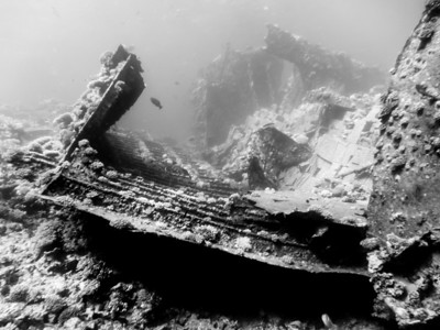 20130602 Dive, Abu Nuhas (Chrisola K)