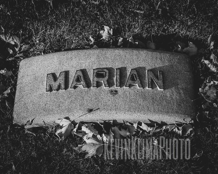 Graceland110218-202.jpg