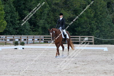 Erin	Strader	riding	Irish Red	#	344