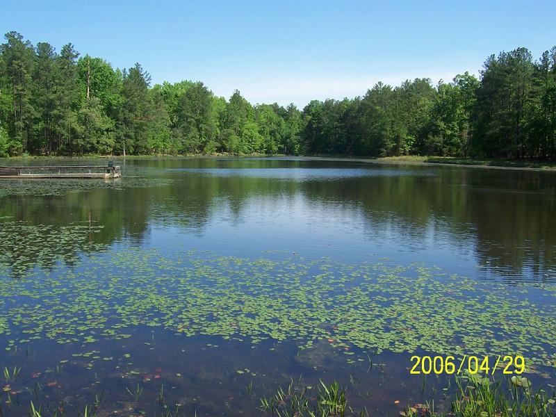 pond_view.jpg