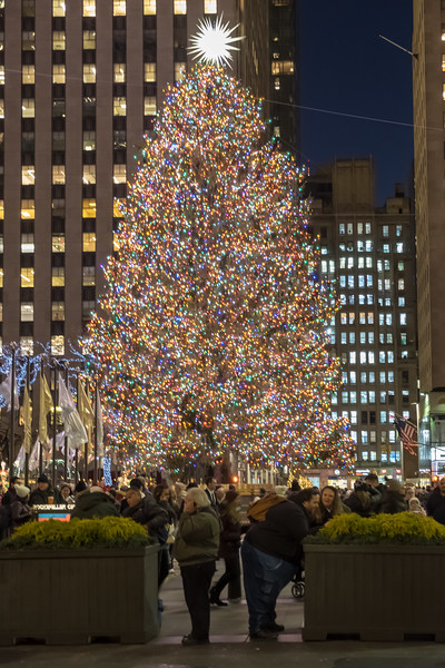 NYC Christmas TourHD (96 of 165).jpg