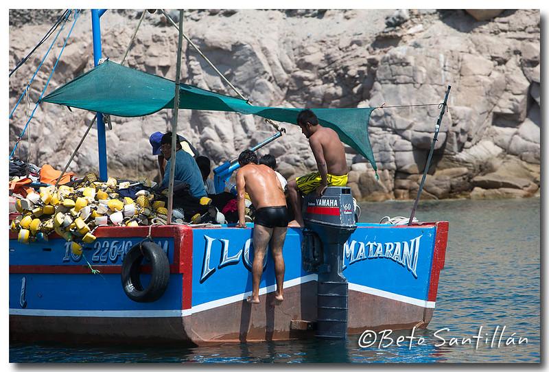 SEA KAYAK 1DX 050315-1231.jpg