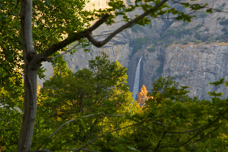 YOS-160629-0002 Lower Yosemite Falls