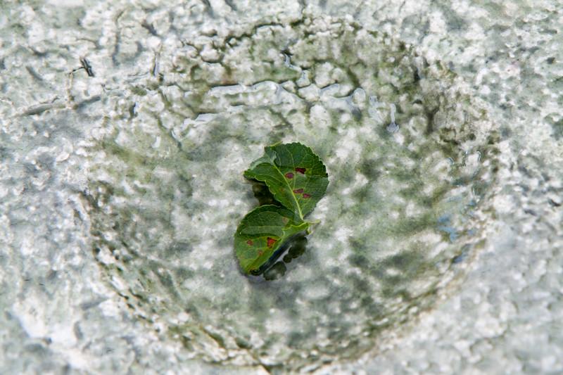 2012 07 21_Westport_3127.jpg