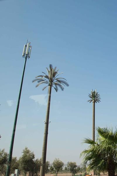 160927-042002-Morocco-0967.jpg
