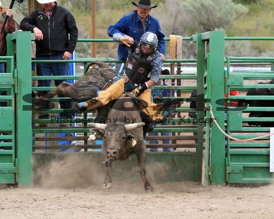 2017 Bull Riding
