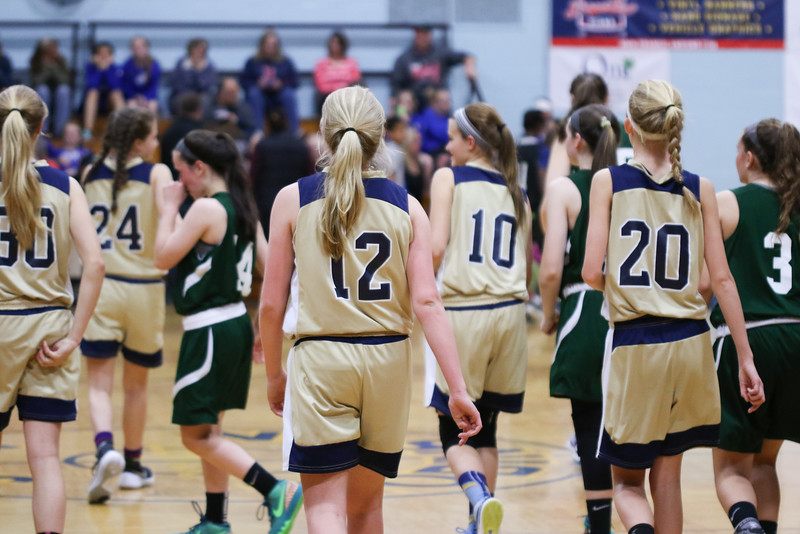 Girls AAU State Champs May 2016-11.jpg