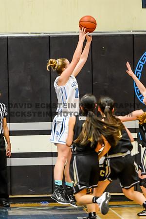 2014-15 VP Girls Varsity Basketball