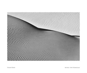 Black and White Landscape (20 Inch)
