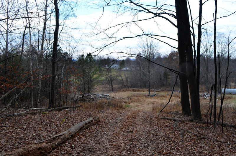 End of the trail looking towards South Street on Marc Fanelli's property now.