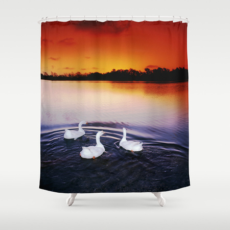Shower Curtain 001.jpg