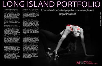 Long Island Portfolio