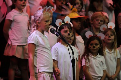 11-15-2017: Grades K-1 Arctic Animals Performance