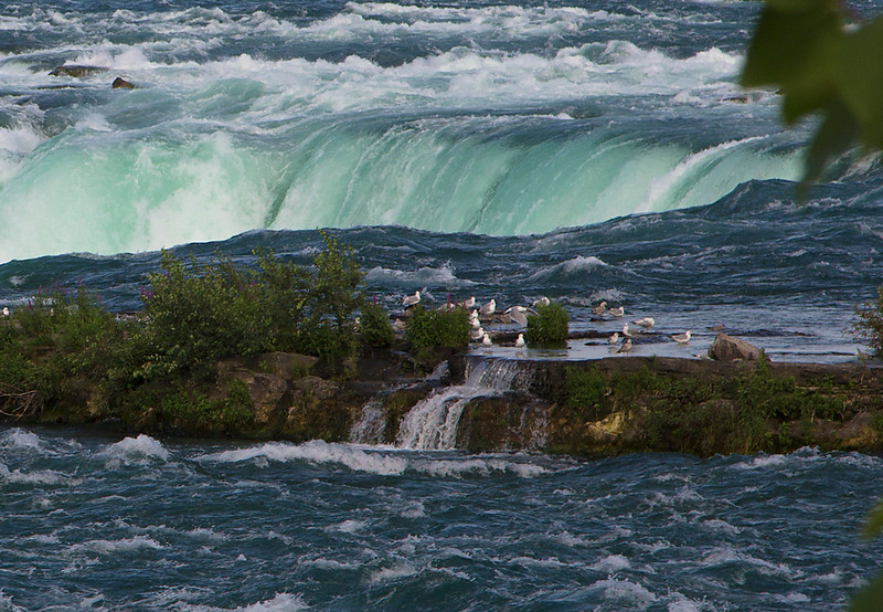 Niagara Falls rim