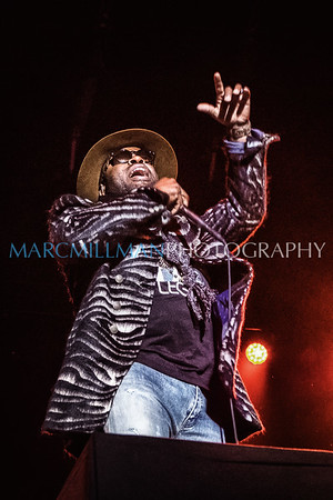 The Roots & Friends @ Roots Picnic (Sat 10/1/16)