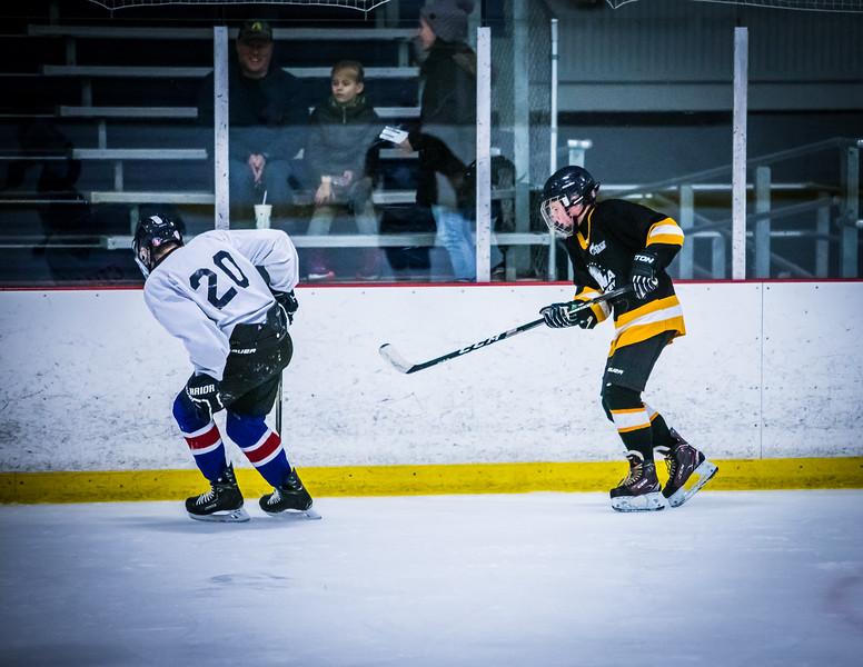 Bruins2-453.jpg