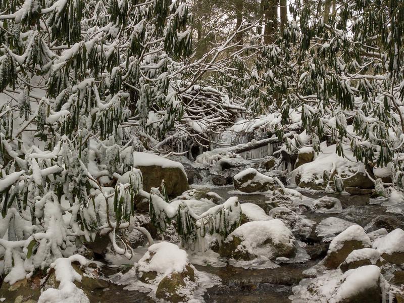 Koosier State Park