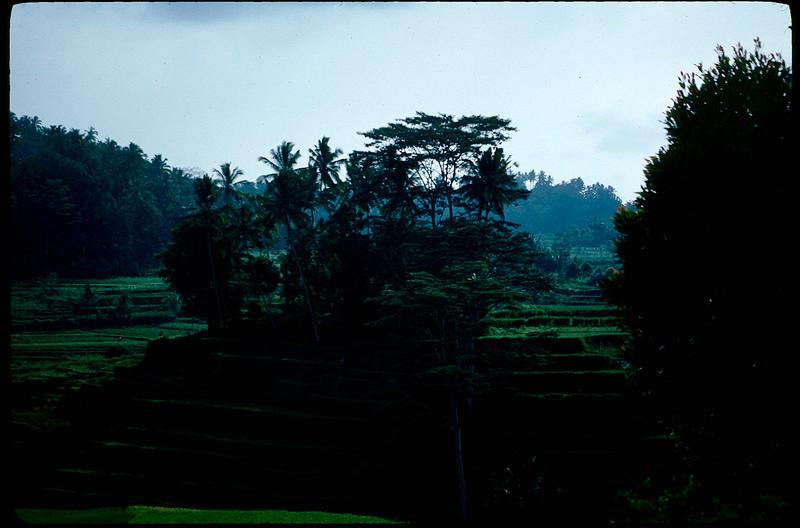 Indonesia1_027.jpg