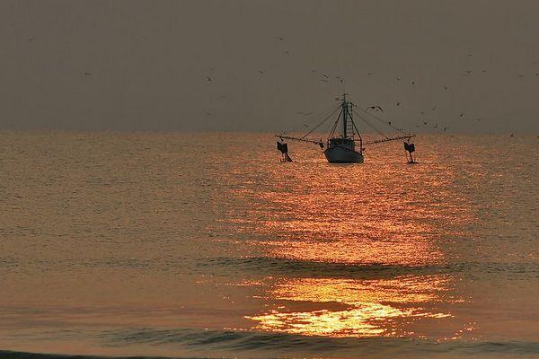 A Wednesday Morning at Jax Beach