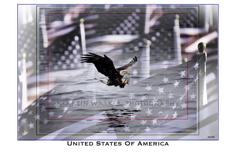 Eagle 20X30.jpg