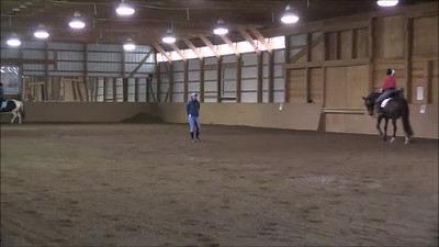 TSRC 2019-04-27 Milestone Sport Horses Video
