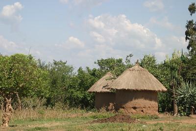 Tanzania Scenery