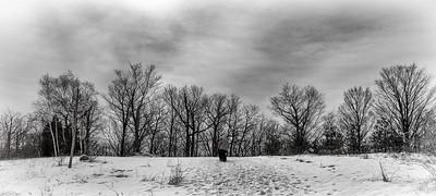 2013 March Winter Landscape  in Toronto