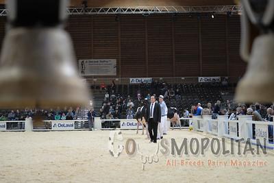 Expo Bulle Holstein Sr Cows 2015