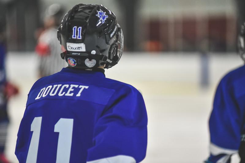 Leafs-42.jpg