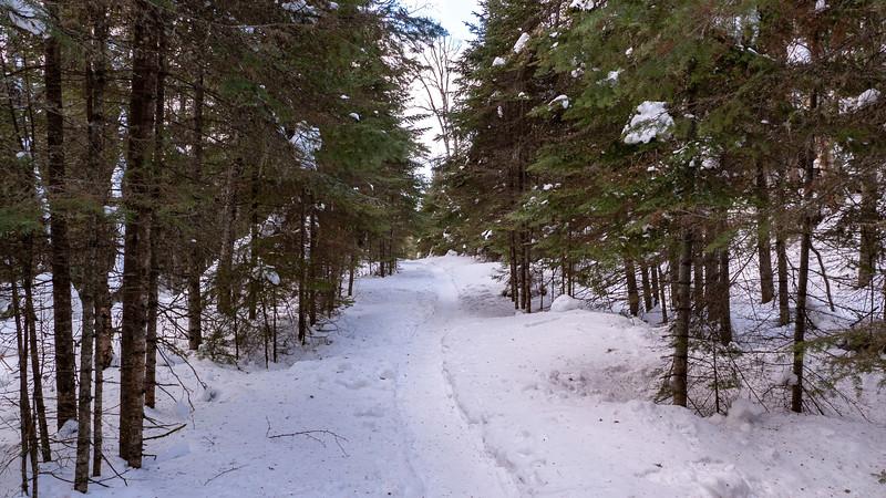 Sleeping-Giant-Provincial-Park-Winter-Hiking-02.jpg