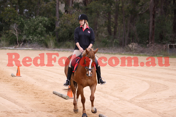 2011 10 02 Darlington Pony Club October-Rally