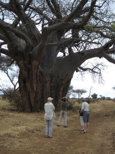 Tanzania14-3254.jpg