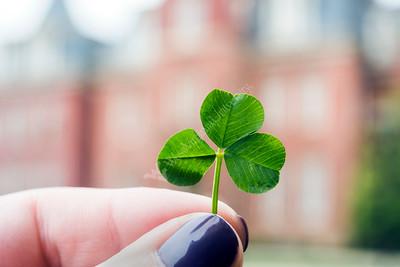 31819 St Patricks Day Social Media