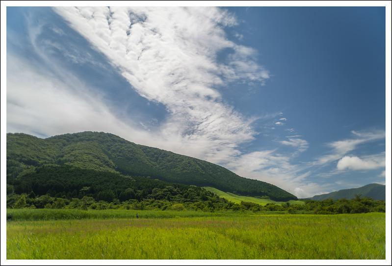 Shiseikaen-7513-HDR.jpg