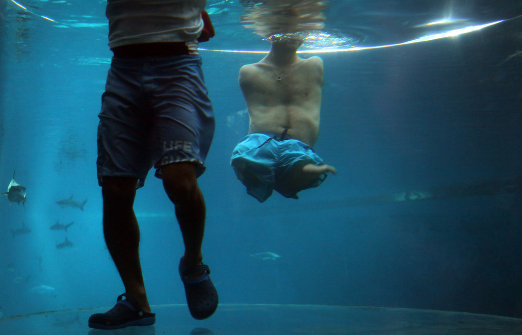 """. Nick Vujicic, right, is accompanied by a life guard as he threads water in an acrylic enclosure keeping safe while diving among sharks, Thursday, Sept. 5, 2013 in Singapore. Vujicic, a Serbian Australian evangelist and motivational speaker born with tetra-amelia syndrome, a rare disorder characterized by the absence of all four limbs, is in the city-state to give a motivational talk and was visiting \""""The Shark Encounter at Marine Life Park\"""" at one of Singapore\'s main tourist attractions in Resorts World Sentosa. (AP Photo/Wong Maye-E)"""