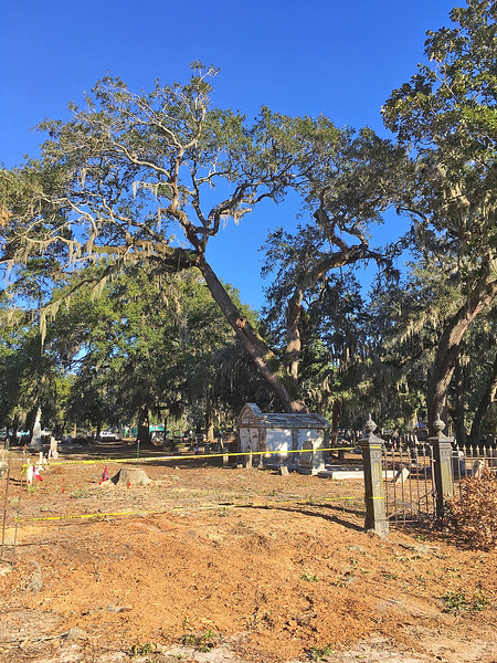 Oak Grove Cemetery Tree Removed and Cleanup 12-10-16