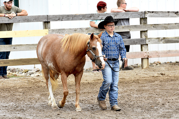 Western Pony Showmanship, Halter & Riding 8-7-2018