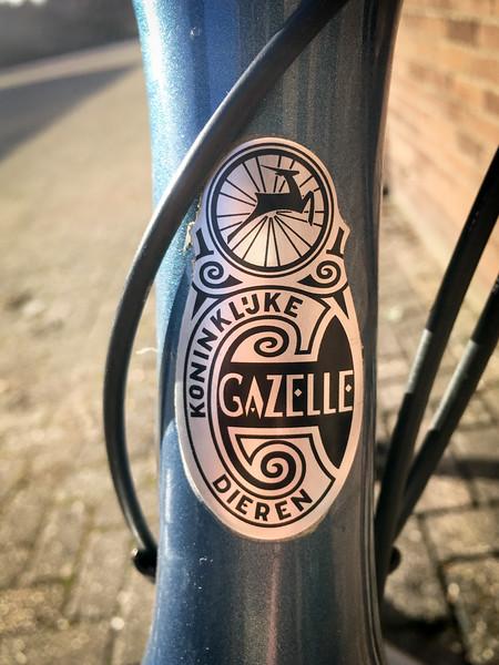 Gazelle-7001.jpg