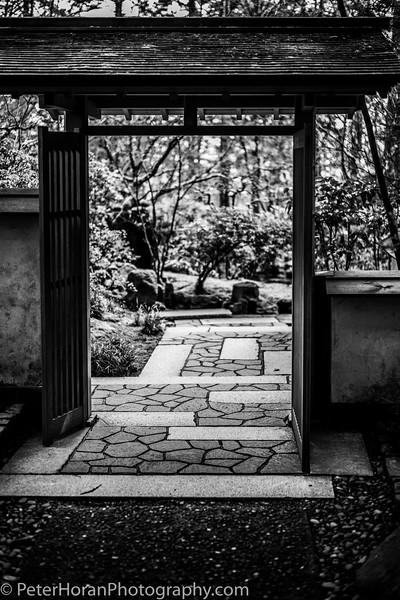 japanese-garden--13_51060262596_o.jpg